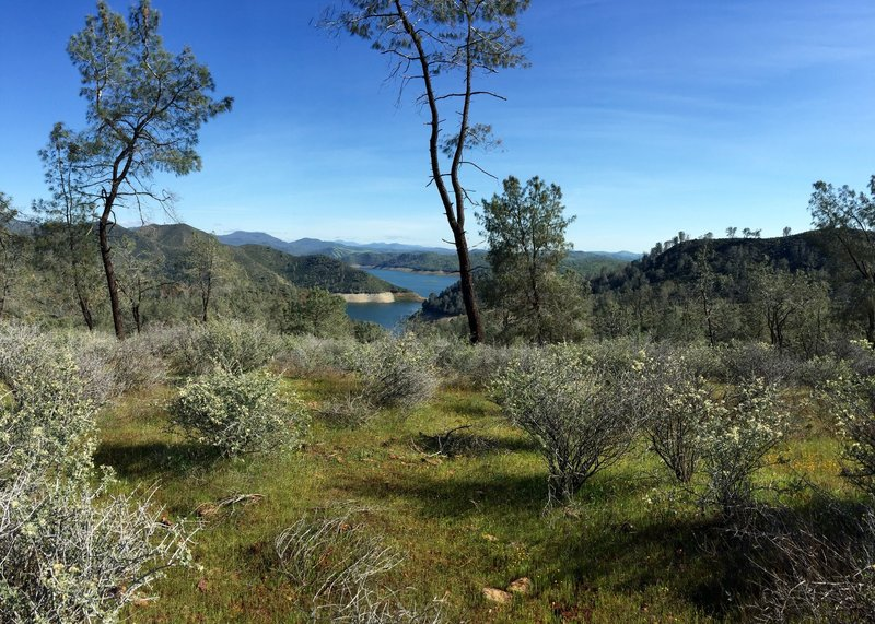 Don Pedro Reservoir in the distance.