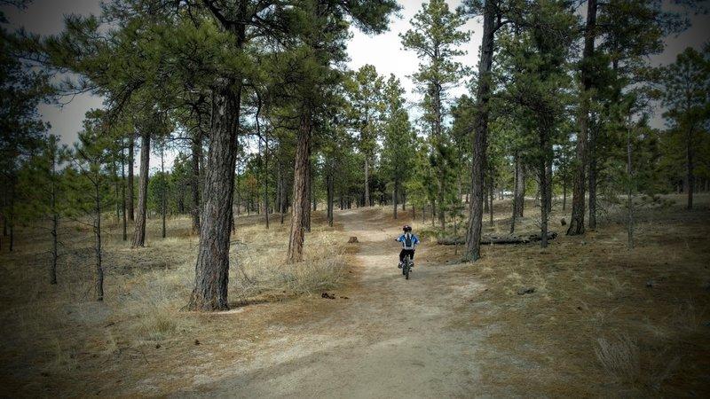 Nice 4 mile ride for beginning bikers.