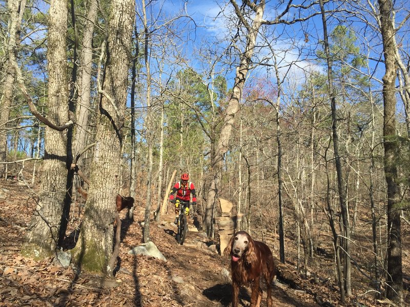 One of the first to ride Gary's Little Lamb - this picture is near the creek crossing.
