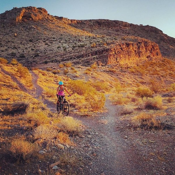 Sunset summer ride, near where the trail forks to Molly's and Puke Hill.