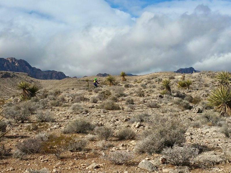 Climbing to reach the clouds over Cottonwood Valley.