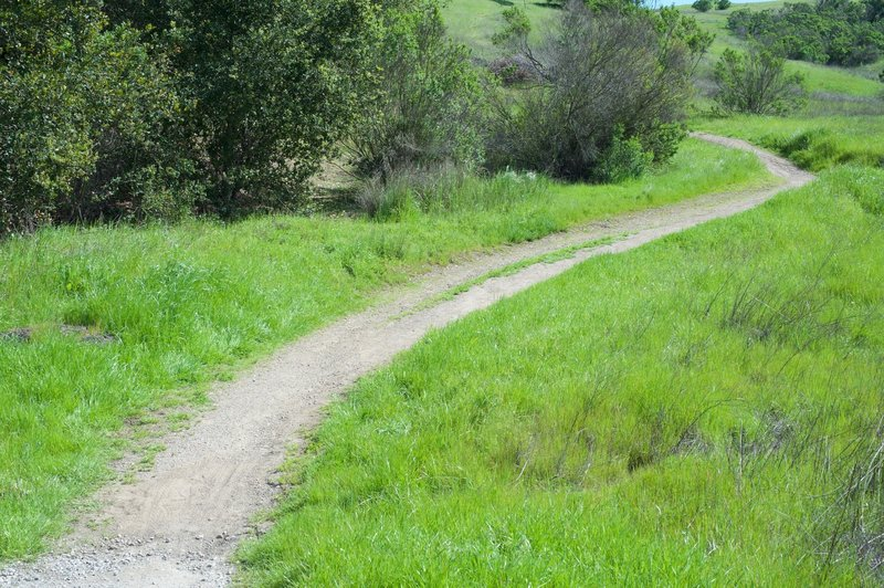 The trail is crushed gravel as it works its way up from the Juan Bautista de Anza Trail.