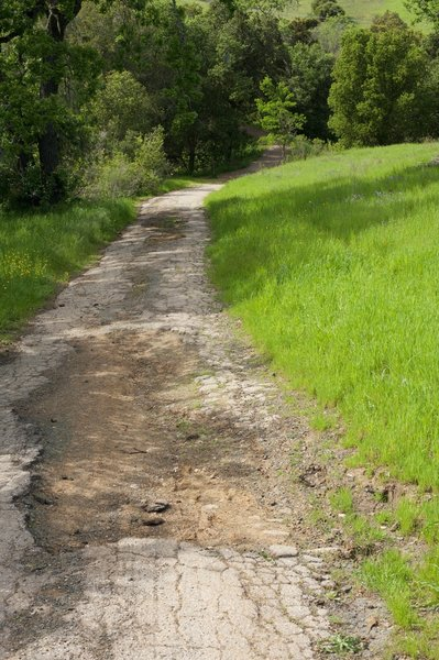 As the trail descends to the lake, the trail returns to an old road that is deteriorating.