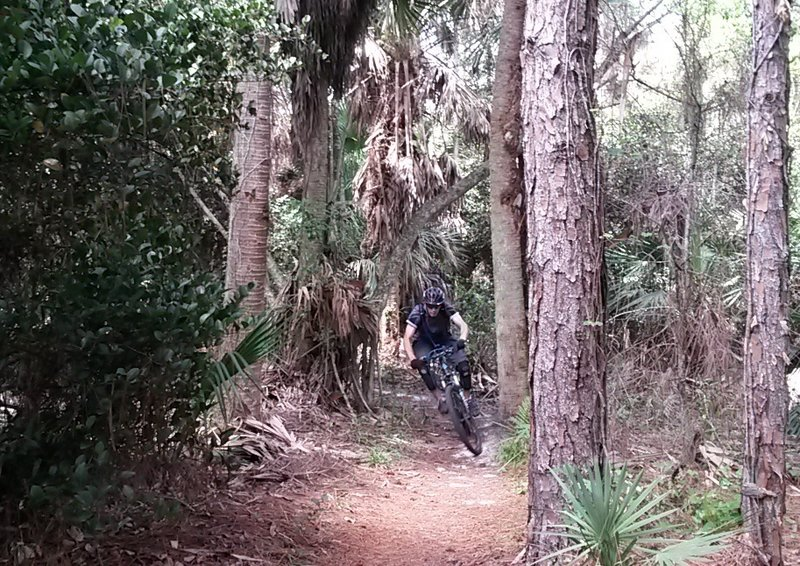 Continuous speedy singletrack. Rip around those corners and say AHHH!