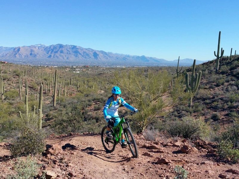 A little bit of climb will give you the Tucson Vista and Catalina.