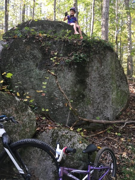 The first rock outcrop on the Yellow Trails, makes a good rest area for new or younger riders. Turn around here for a 3.5 mile ride.