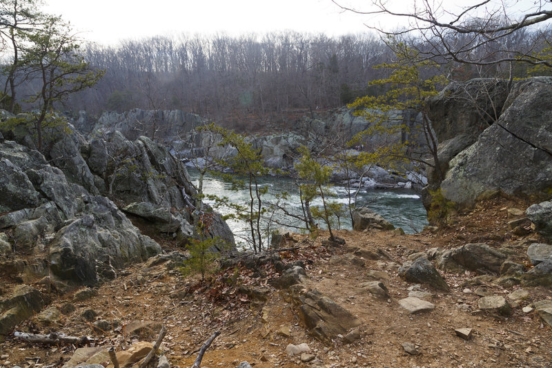 Beautiful views of the Potomac can be had from River Trail.