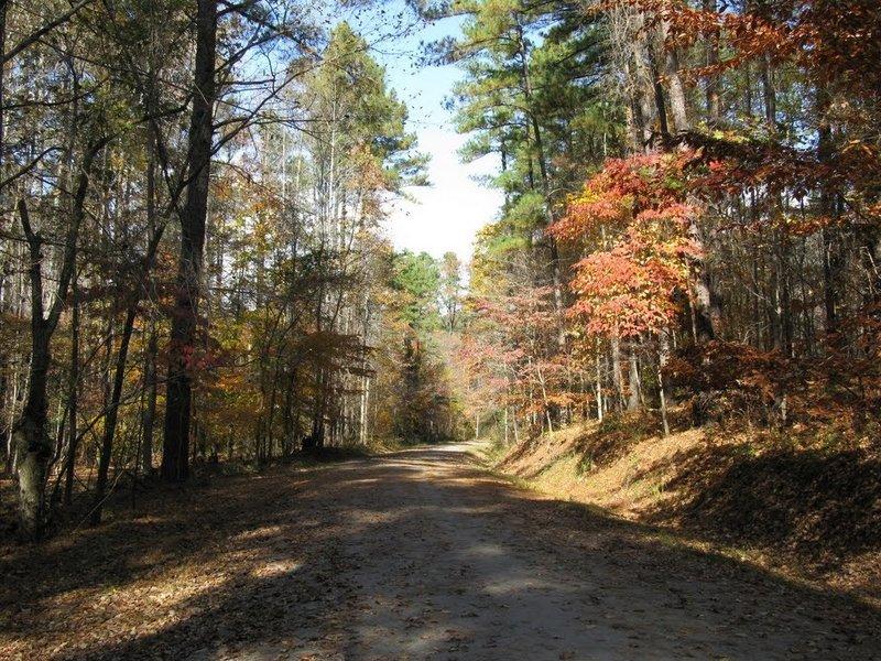 Graylyn Multiuse Trail.