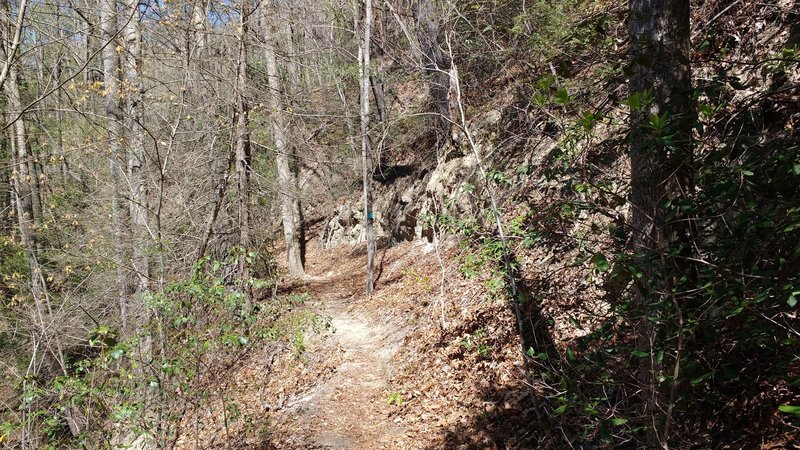 Interesting 'sand cliff' formations on the side of  Pulliam Creek Trail.