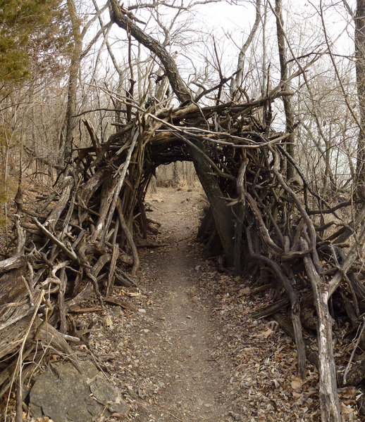 Tunnel teepee at White Trail. with permission from opscene