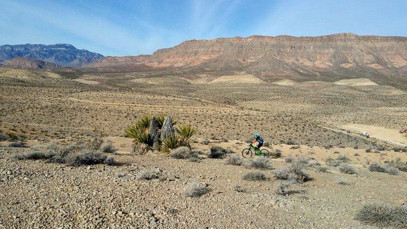 Woman on a bike enjoying Man with a Van trail.