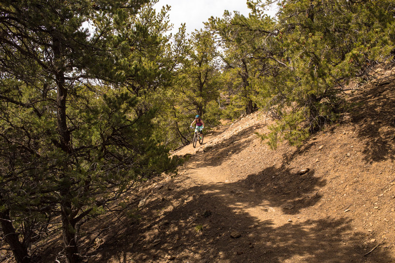 Some of the smoother trail on the western side of the Devisadero Loop Trail.