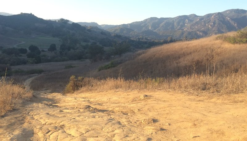 This is looking down Las Virgenes Canyon.
