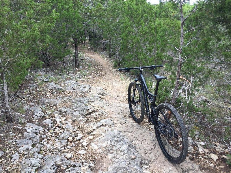 Pace Bend has plenty of rocks so be prepared.