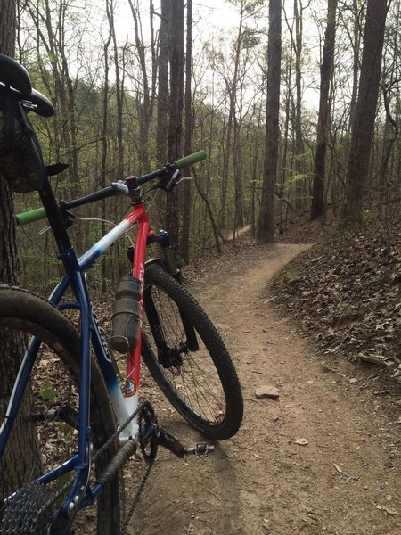 Flowy fast singletrack with some exposure next to Sope Creek.