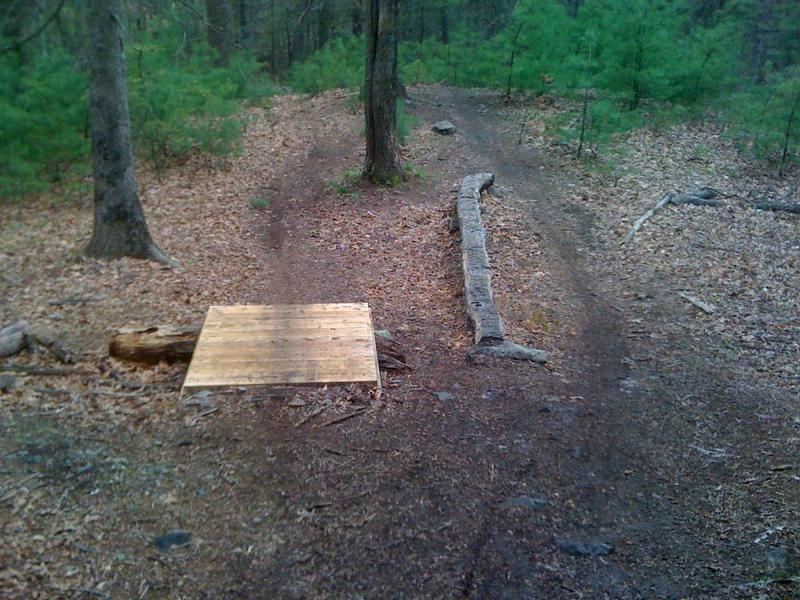 Skinny and jump at north part of trails.
