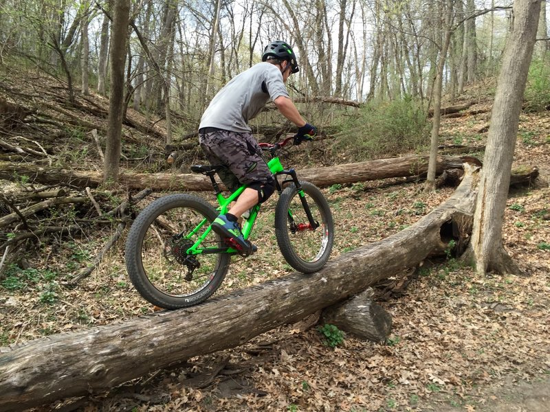 """Riding one of the many fun technical features at Lebanon Hills! A great intermediate trail system with some advanced """"B"""" line features you go ride around or challenge your friends on, like this log!"""