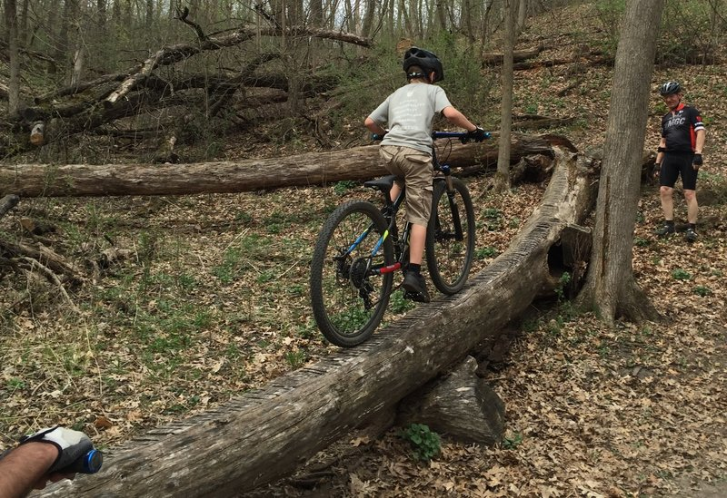 With practice you can ride the feature and challenge your buddies! 9-year-old Peter riding the log on his third attempt!