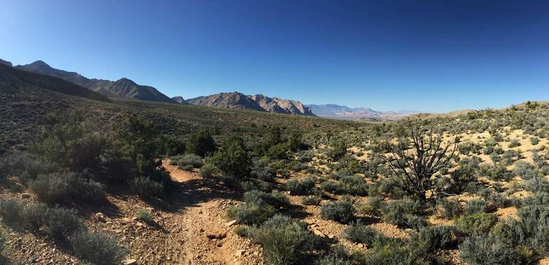 Landscape on east side of Dead Horse Trail.