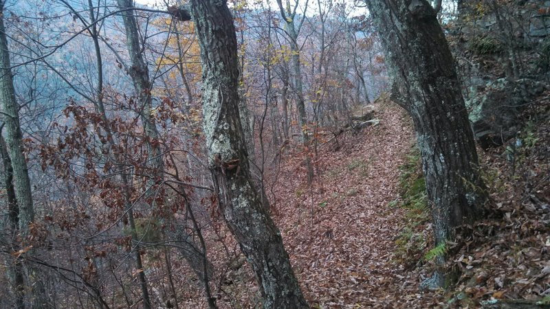 Downhill off of Short Mountain.