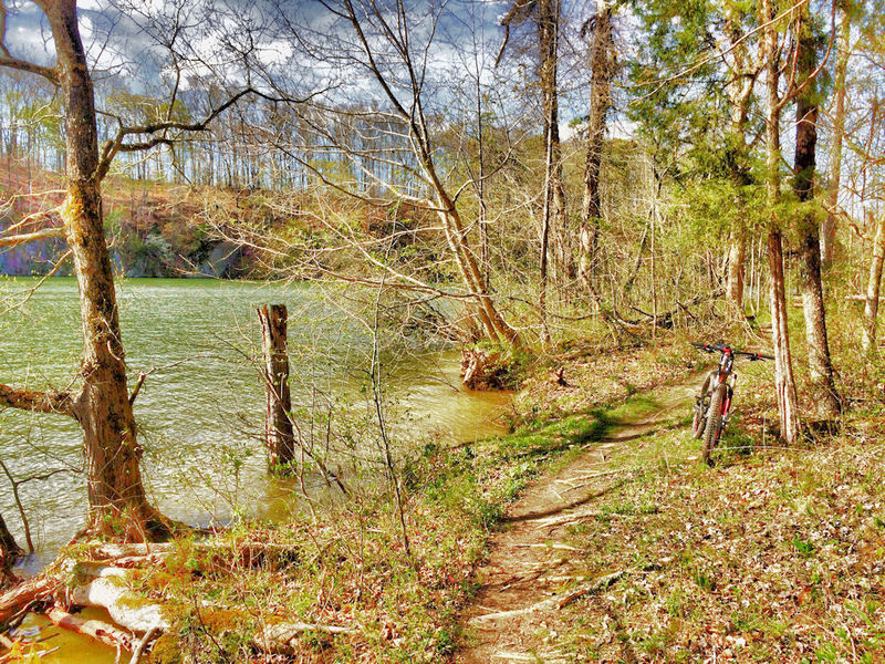 Darwin's Revenge at the Lake.