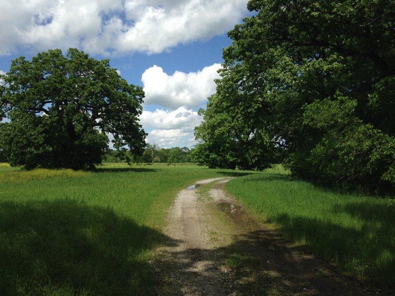 Greenbelt Trail in April.
