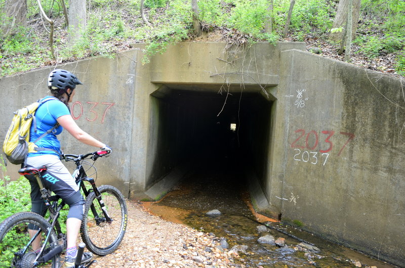 Tunnel Under I-95.