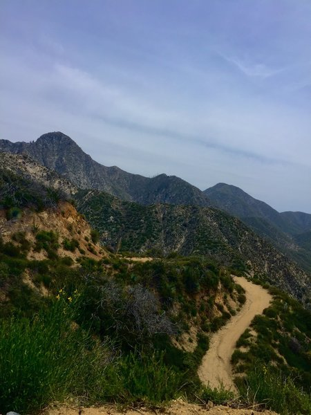 Looking back, half-way up the switchbacks on Josephine Saddle Fire road.