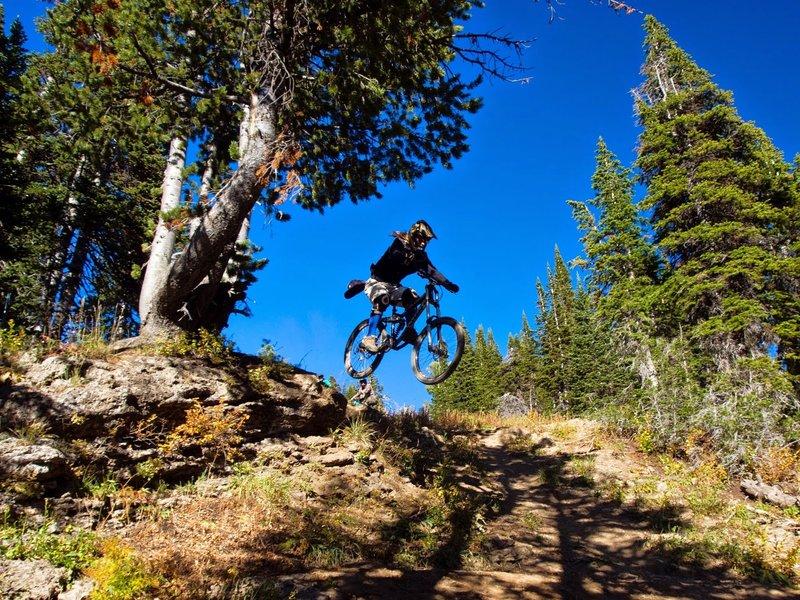 Rider Kenneth Heidenreich rolling off Buffalo Drop at the Grand Targhee Bike Park in Alta, WY.<br> Photo: Dana Ramos
