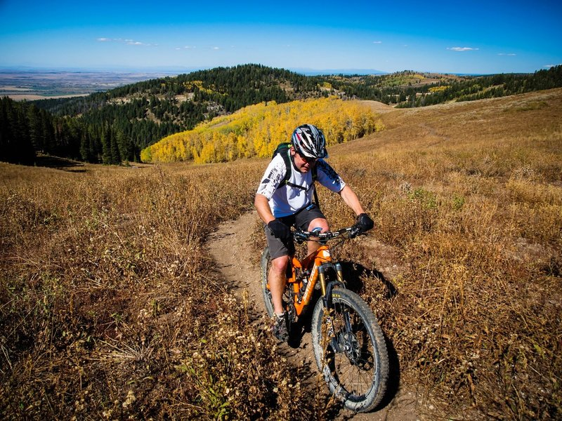 Grand Targhee Resort owner Geordi Gillett climbs Andy's trail (aka Lightning Ridge) in the fall on his way to the Peaked Mountain trails. <br> Photo: Dana Ramos - Instagram: @dnasince1979