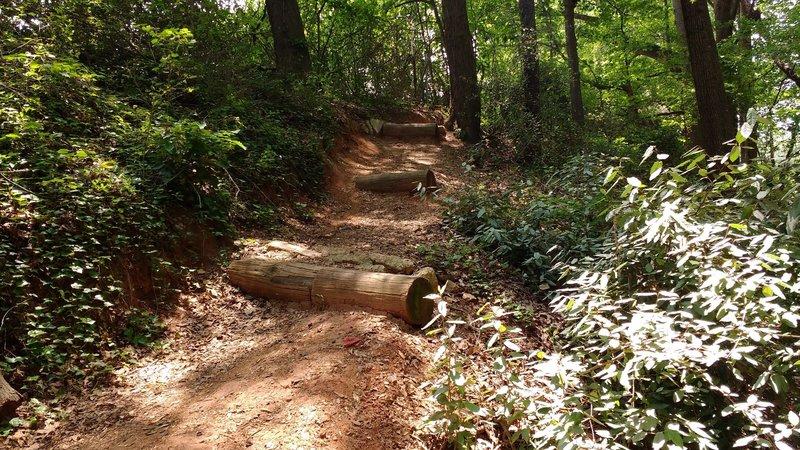 Large log waterbar drops.
