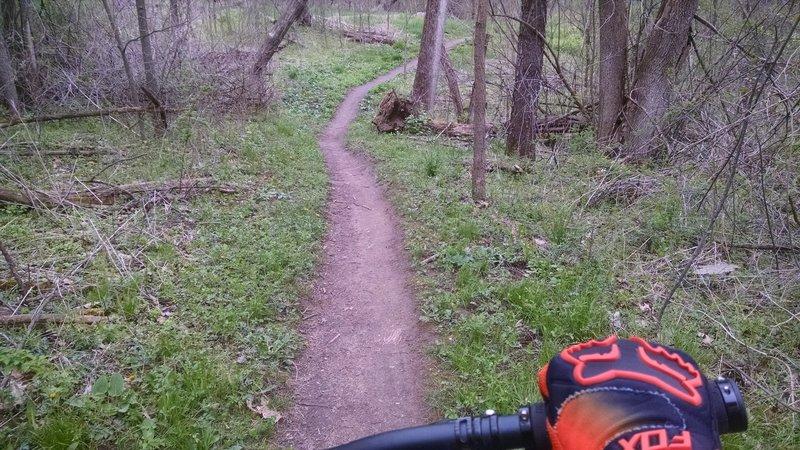 Back Section - Potawatomi Trail.