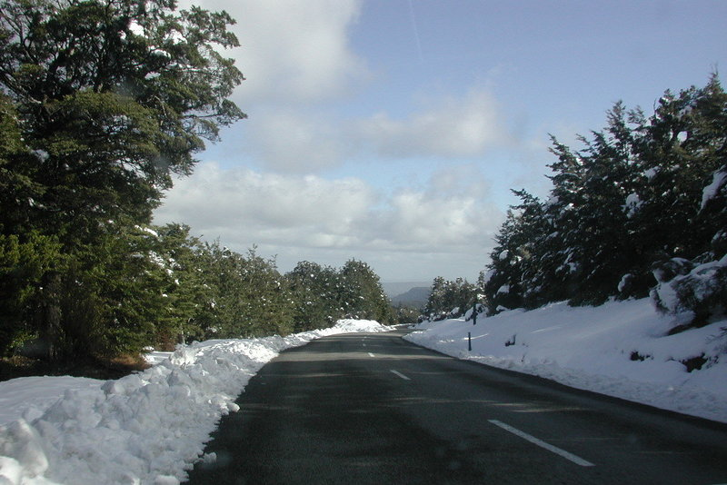 Ohakune Mountain Road in the winter.