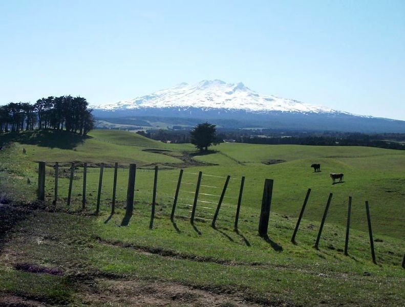 Most of Ratamaire Road gives beautiful views of Mt Ruapehu, Ohakune and surrounding farmland.