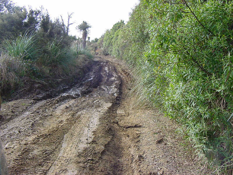 Plenty of ruts and mud can be found on The 42 Traverse.