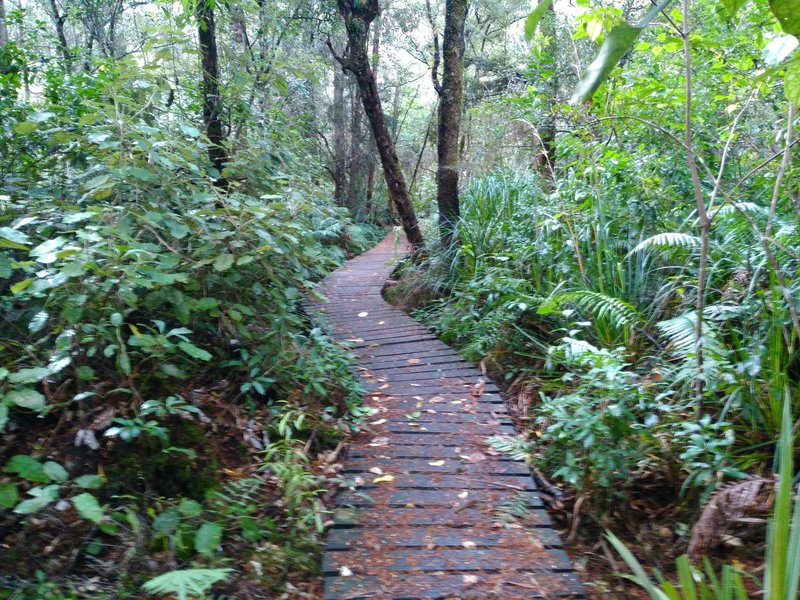 A boardwalk adds to the beauty of Jubilee Park, right in the heart of Ohakune.