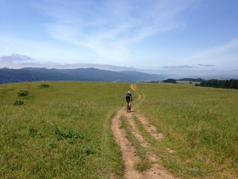 Descending old doubletrack/cow trail with Tomales Bay in the background