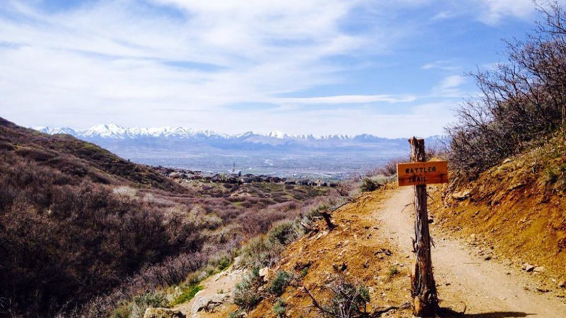 Looking down Canyon, with Rattler Trail Sign.