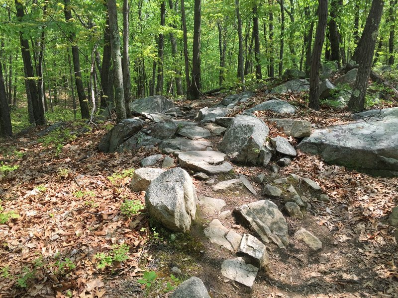 Rock sections appear throughout the trail.