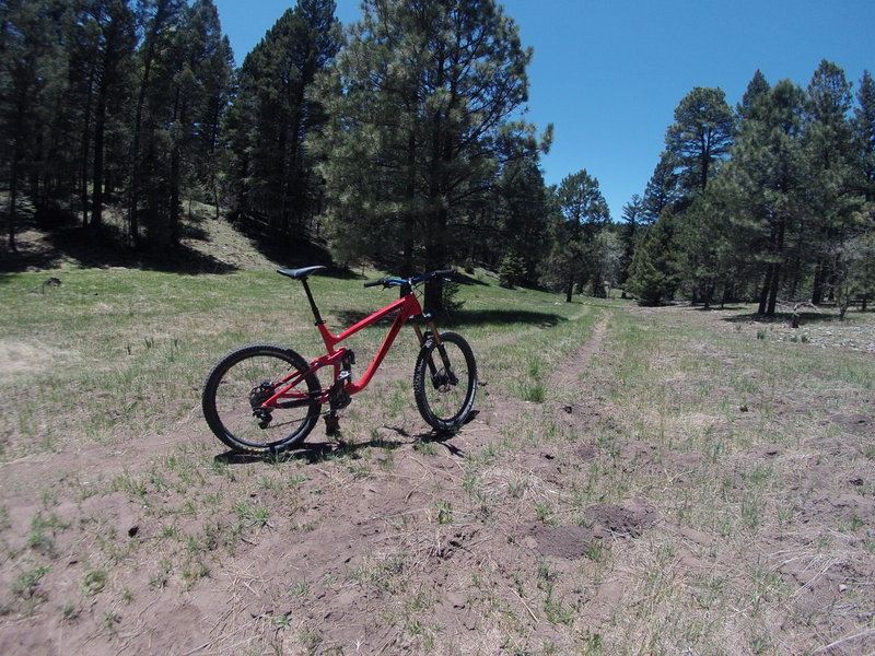 Starting on the downhill. Some fun doubletrack