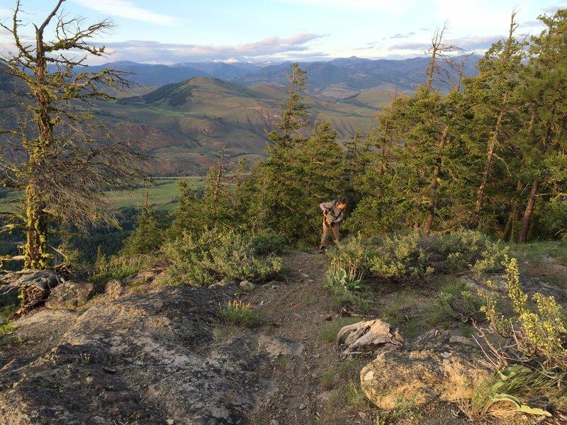 Virginian Ridge Trail at the uppermost overlook.