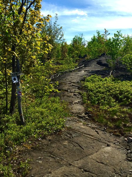 Northern Ontario's Canadian Shield riding at it's finest.