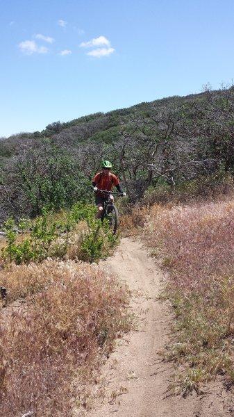 Fun downhill!