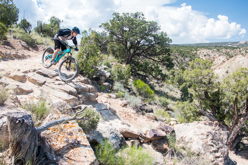 The downhill segment of the Gunny Loops is one of the best in the Fruita - Grand Junction area.