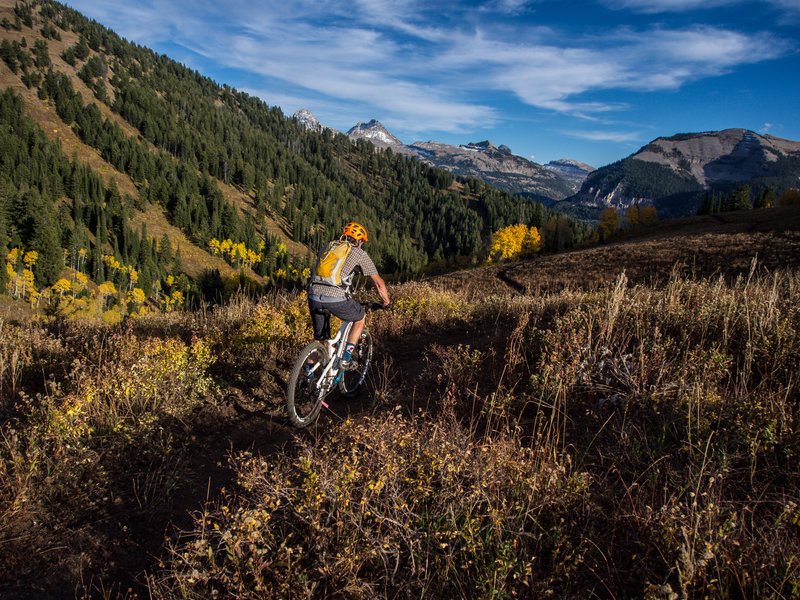 Grand Targhee Resort trail builder Andy Williams test riding a very recently completed Rocky Mountain Way.