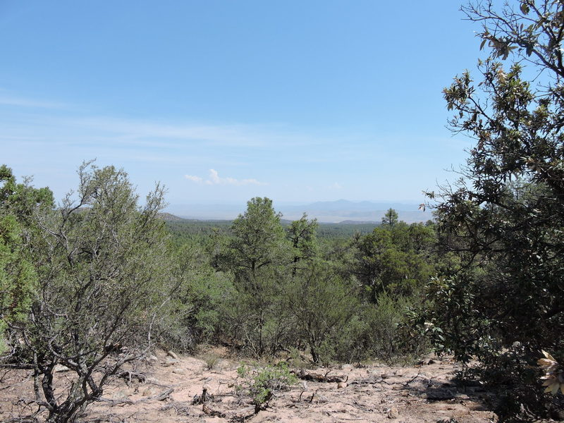 A typical vista from the ride. Tree cover obscures some viewpoints.
