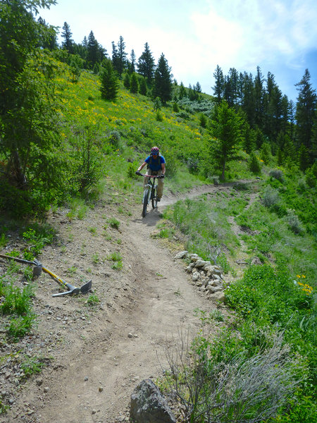 """""""Testing"""" the trail repairs after a Trail Day on Meadow Surfer."""