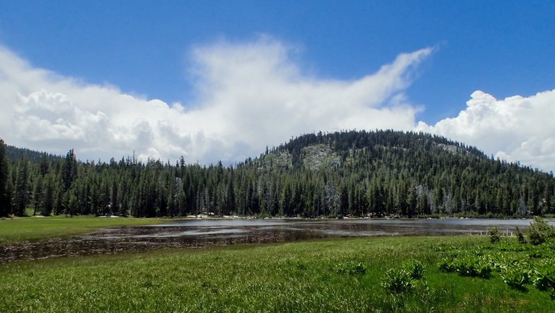 Miller Meadows - a seasonal pond and open meadows with lots of wildflowers. Worth the 200 yard side trip.