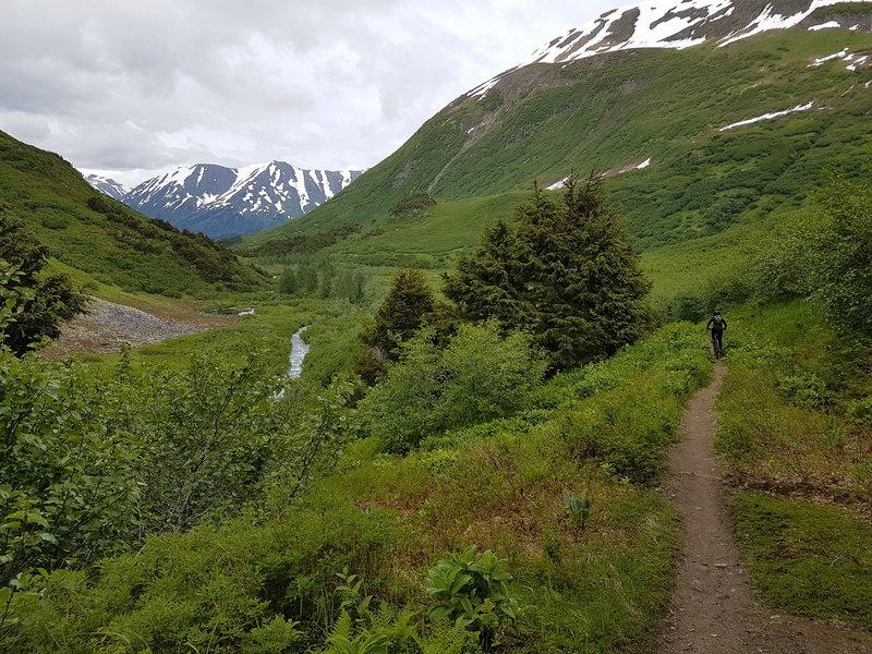Johnson Pass Trail North.