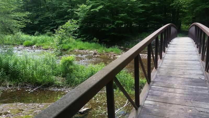 Beginning of Leading Ridge Trail